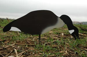 Goose silouette decoy